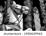 Carousel Horse Portrait  Black...