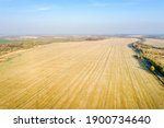 Aerial View Of Harvested...