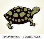 the little turtle is crawling.... | Shutterstock .eps vector #1900807666