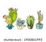 set of cartoon cactus ... | Shutterstock .eps vector #1900861993