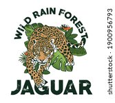 wild rain forest jaguar ... | Shutterstock .eps vector #1900956793
