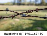 Close Up On A Barbed Wire On A...
