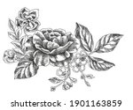 graphic flowers for printed and ... | Shutterstock . vector #1901163859
