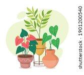 beautiful houseplants in... | Shutterstock .eps vector #1901200540