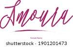female name   amoura beautiful... | Shutterstock .eps vector #1901201473