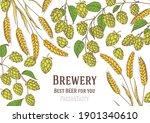 beer ingredients vector... | Shutterstock .eps vector #1901340610