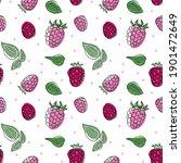 Illustration Of Raspberry...