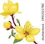 vietnam yellow blossom tree...   Shutterstock .eps vector #1901521780