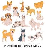 set of cartoon purebred dogs....   Shutterstock .eps vector #1901542636