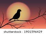 bird silhouette on tree on... | Shutterstock .eps vector #1901596429