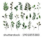 collection of greenery leaves... | Shutterstock .eps vector #1901855383