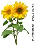 Two Sunflowers In Bouquet...