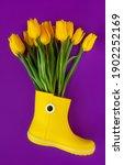 Fresh Yellow Spring Flowers...