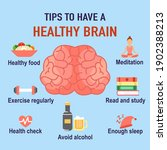 tips to have a healthy brain... | Shutterstock .eps vector #1902388213