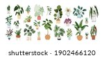 set of trendy potted plants for ... | Shutterstock .eps vector #1902466120
