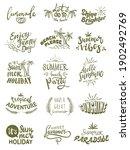 summer themed hand lettering...   Shutterstock .eps vector #1902492769
