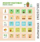 regrow vegetables from scraps...   Shutterstock .eps vector #1902517183