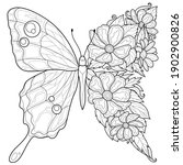 Butterfly And Flowers.coloring...