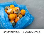 Rotting Tangerines In Blue...