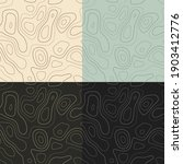 topography patterns. seamless...   Shutterstock .eps vector #1903412776