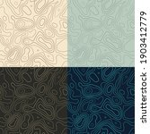 topography patterns. seamless...   Shutterstock .eps vector #1903412779