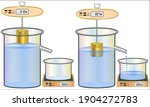 archimedes' principle... | Shutterstock .eps vector #1904272783