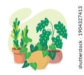 green houseplants and succulent ... | Shutterstock .eps vector #1904327413