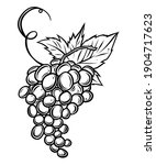 grapes bunch with leaves ...   Shutterstock .eps vector #1904717623