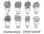 line sketch of flowers in pots  ... | Shutterstock .eps vector #1904733439