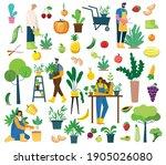 vector set of village people... | Shutterstock .eps vector #1905026080