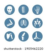 human bone and joint icon set | Shutterstock .eps vector #1905462220