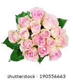 bouquet of pink roses isolated... | Shutterstock . vector #190556663