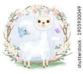adorable baby alpaca in the...   Shutterstock .eps vector #1905930049
