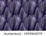 Knitted Wool Texture. Lilac...