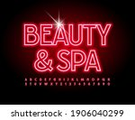 vector bright logo beauty and... | Shutterstock .eps vector #1906040299