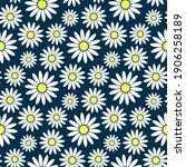 beautiful colored chamomile...   Shutterstock .eps vector #1906258189