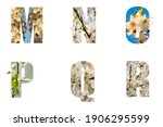 Floral Letters. The Letters M N ...