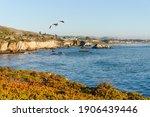 Pismo Beach Cliffs And Ocean...