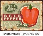 pepper vegetable metal plate...   Shutterstock .eps vector #1906789429