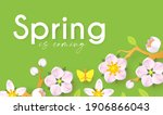 spring background with soft... | Shutterstock .eps vector #1906866043