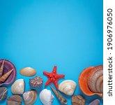 Sea   Shells  Red Starfish ...