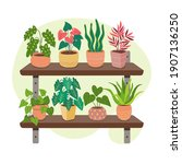 collection of houseplants on... | Shutterstock .eps vector #1907136250