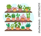collection of houseplants on... | Shutterstock .eps vector #1907136253