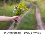 Woman's Hand Holds A Bouquet Of ...