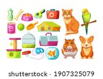animal food  accessories and... | Shutterstock .eps vector #1907325079
