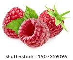 Raspberri Berry With Leaves...