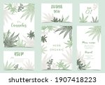 collection of cannabis...   Shutterstock .eps vector #1907418223