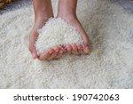 thai jasmine rice on hand | Shutterstock . vector #190742063