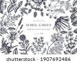 hand drawn herbal plants banner.... | Shutterstock .eps vector #1907692486