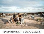 Abandoned B29 Ww2 Usa Army...